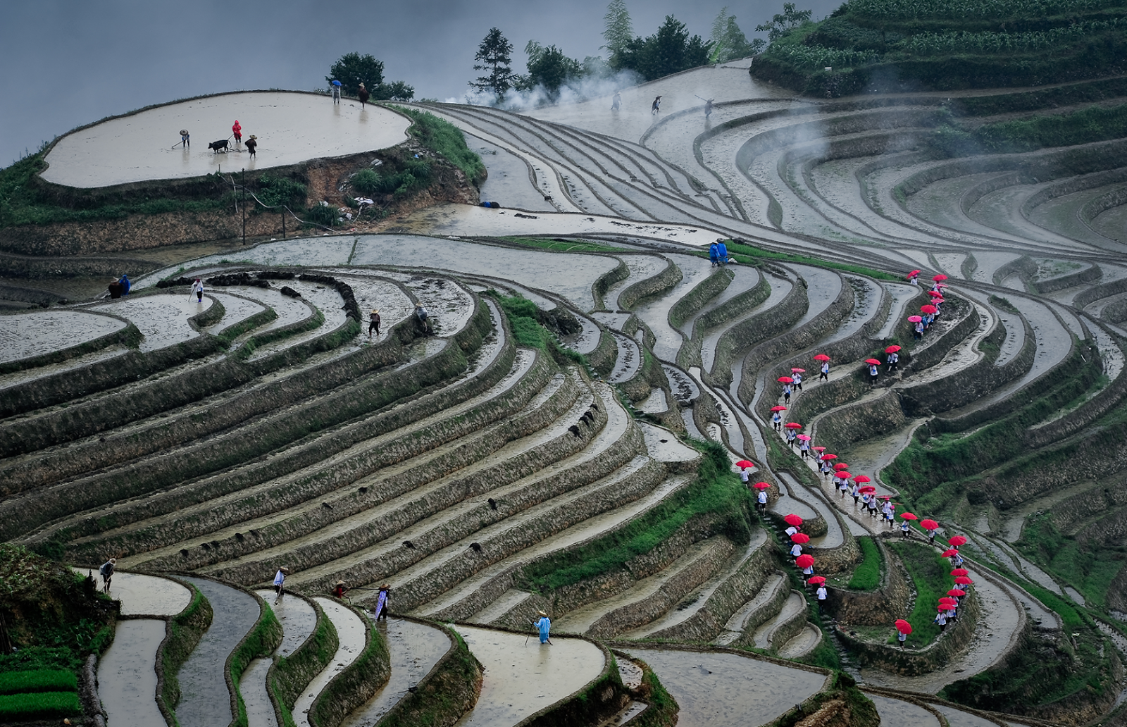 Ping'an Terraced Fields