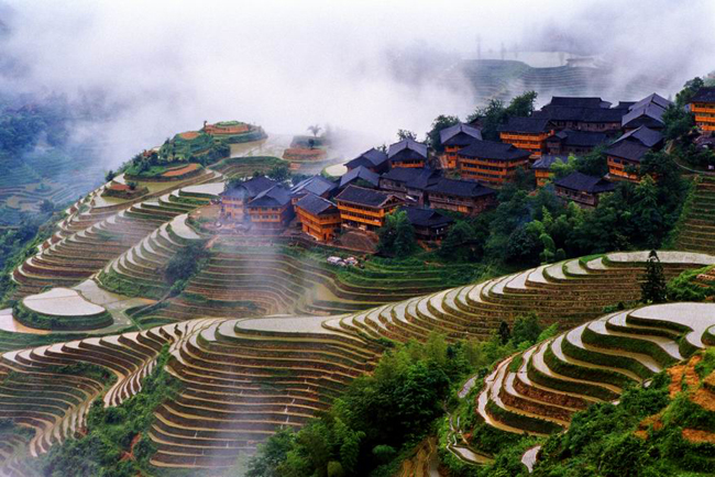 Jinkeng Terraced Fields